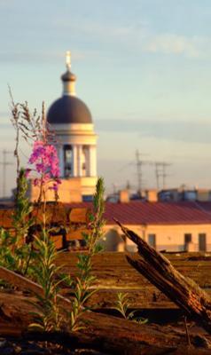 *** Петербург, закат, Владимирский собор, крыши
