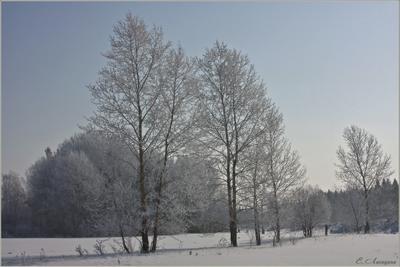 Тихое зимнее утро