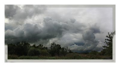 Облакааа.. белокрылые лошадки.. облака, тучи