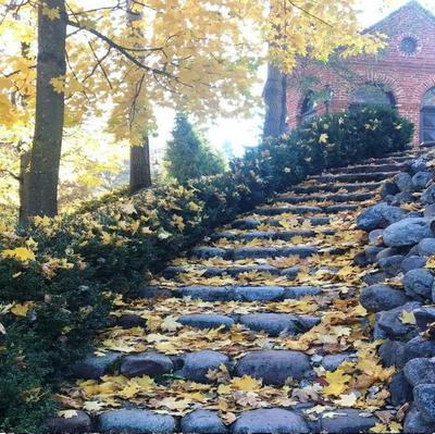 Осенняя дорожка...