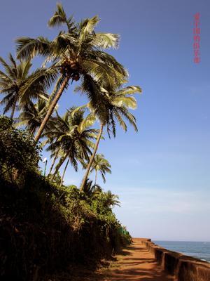 Вечное лето Гоа не Индия, но тоже хорошо!