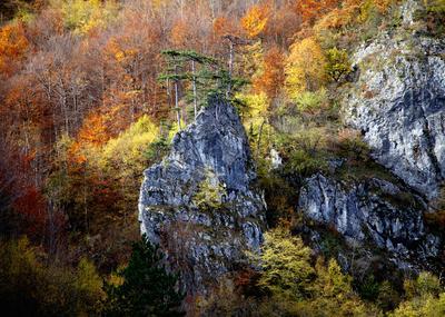 Ноябрь в Черногории