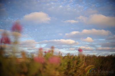 По дороге с облаками Чукотка
