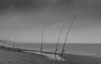 Рыбалка в хмурое утро
