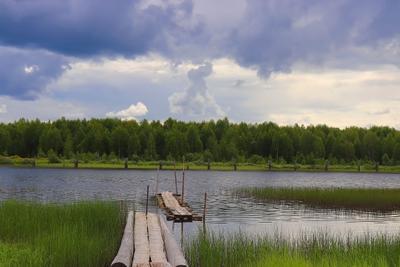 ***На реке природа пейзаж река