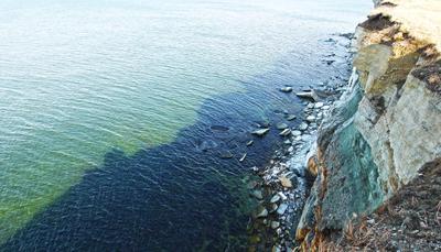 Утёс в Палдиски эстония прибалтика Палдиски путешествие море