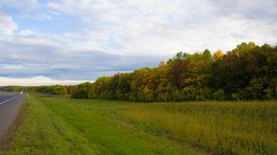 Осень, ранняя. ранняя осень сентябрь дорога поле небо