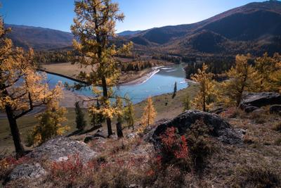Рождение Аргута Горный Алтай осень горы река Ак-Алаха Аргут Джазатор