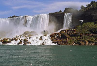 И опять о том же... Водопад Ниагара Чайки