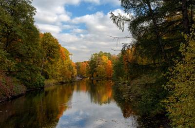 Осень в парке СПб парк осень