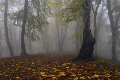 Октябрь Кизиловка Кабардино-Балкария