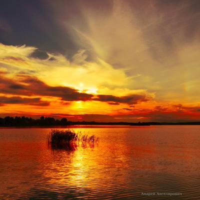Летние воспоминания Закат солнце река вода