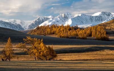*** пейзаж Алтай горы осень закат