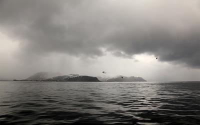 Норвежское море море