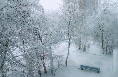***Зима в г. Лакинске  в 2018 году