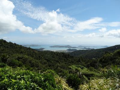 Вид на побережье Новой Зеландии