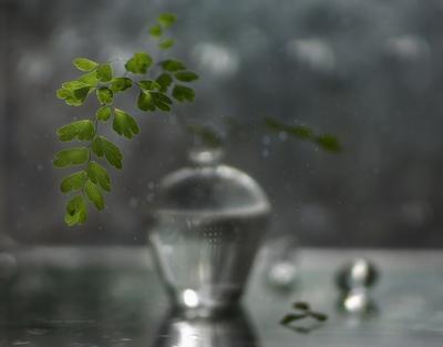 зелёненький*