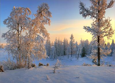 В лучах февральского заката... февраль ЯНАО Новый Уренгой