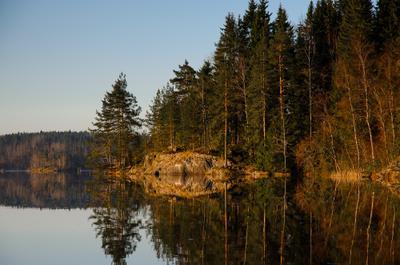 Утро в Карелии Карелия сосны остров озеро