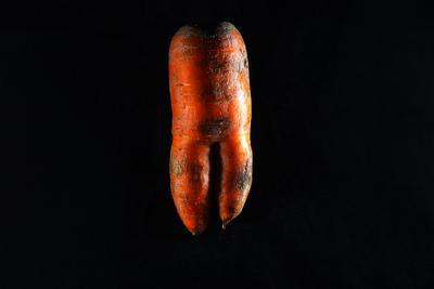 Carrot Carrots vegetable orange vitamins benefits agriculture garden food art nature bed