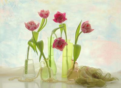 Про тюльпаны стекло бутылки натюрморт тюльпаны Хохлова Наталья