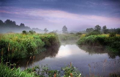 Утро у маленькой речки Рассвет река речка дерево тучи фиолетовое небо берега