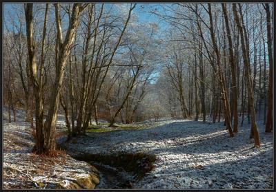 Сухой ручей (Первый снег) Лес, ручей, солнце, снег