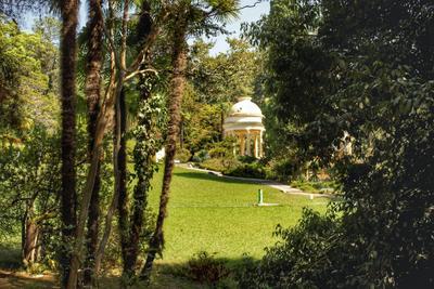 Парк в Сочи Парк деревья трава беседка