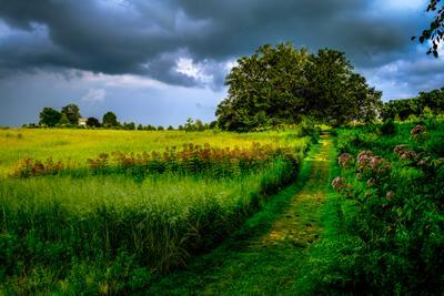 Приближается гроза Гроза поле облака погода