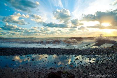 *** Черное море, Крым