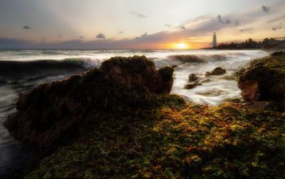 """""""Краски моря"""" море пейзаж Крым закат маяк волны водоросли"""