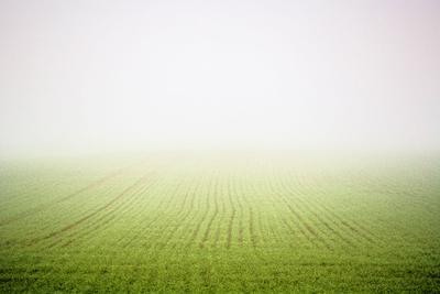 Mist fog mist Lithuania
