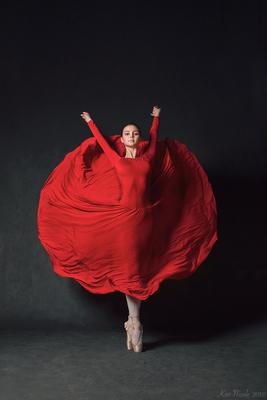 . балет балерина красное черное пуанты театр студия платье спорт искусство