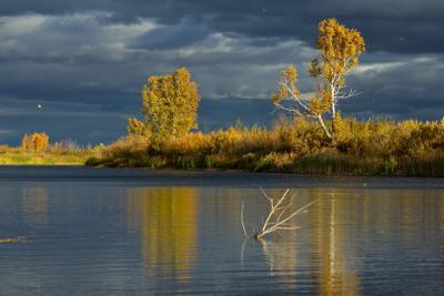 Там где листья как звезды) озеро Малое Караульное