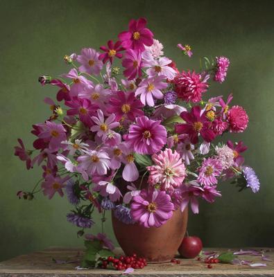 Палитра нежной красоты Натюрморт космея лето букет цветов
