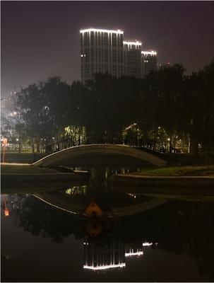 *** парк Москва ночь