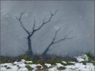 """""""Ледяной пейзаж"""" лед трешины снег трава"""