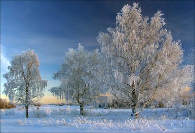 Декабрь.Короткий день декабрь зима иней Коми Ухта п-фильтр