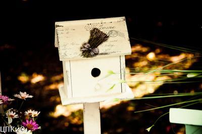 """Открытка """"Скворечник-почтовый ящик"""" выставка ландшафт дизайн почта скворечник открытка"""