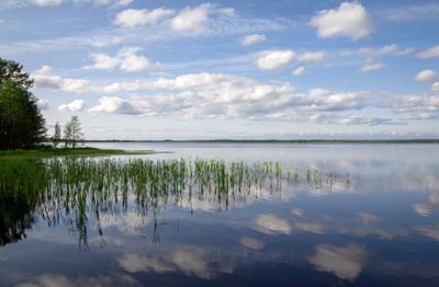 Озеро Нюхти озеро лето пейзаж природа