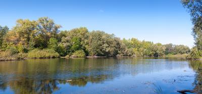 Тихое место озеро гладь вода август утро лес деревья берег лето ясный день