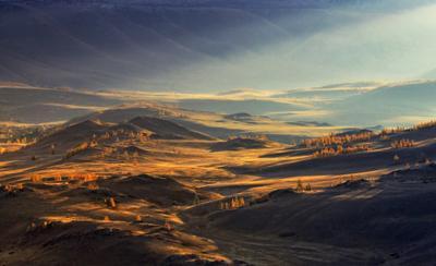 Утро в Курайской степи Алтай Горный Курай Рассвет