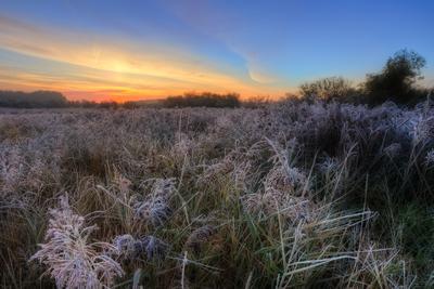 Морозное утро пейзаж рассвет урал трава небо