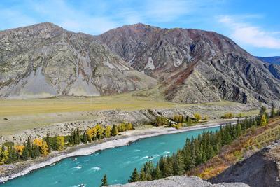 Катунь, палитра сентября Горный Алтай пейзаж реки Катунь nataly-teplyakov