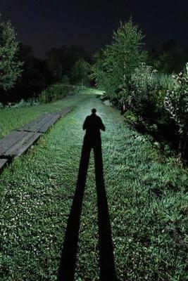 Тень фотографа ночь тень