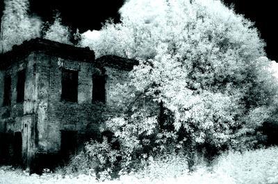 ***Ярославль.Ярославская губерния.Р.Ф.2021г.г. от Р.Х. Инфракрасная,чёрно-белая,монохромная, фотография. (infrared imaging) Инфракрасная чёрно-белая монохромная фотография infrared imaging