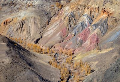 Алтайский Марс 2 Алтай осень цветные горы
