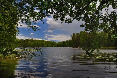На озере. Июнь озеро триатлон заплыв 1500м Вантаа Большой_Хельсинки Kuusijärvi Vantaa Finland