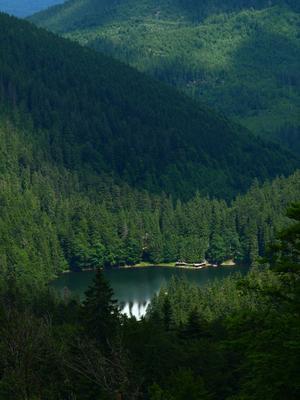 озеро Синевир (2) Карпаты озеро Синевир