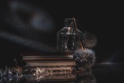Этюд с одуванчиками still life